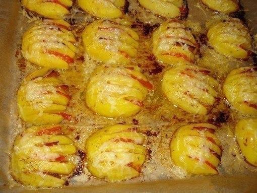 kartofelnyie-rakushki