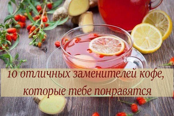 10-otlichnyih-zameniteley-kofe-kotoryie-tebe-ponravyatsya